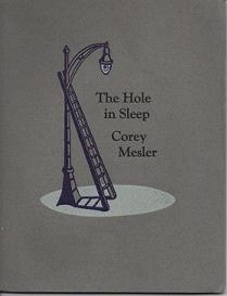 THE HOLE IN SLEEP (WOOD WORKS NO. 76). Corey Mesler.