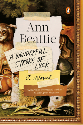 A Wonderful Stroke of Luck: A Novel. Ann Beattie